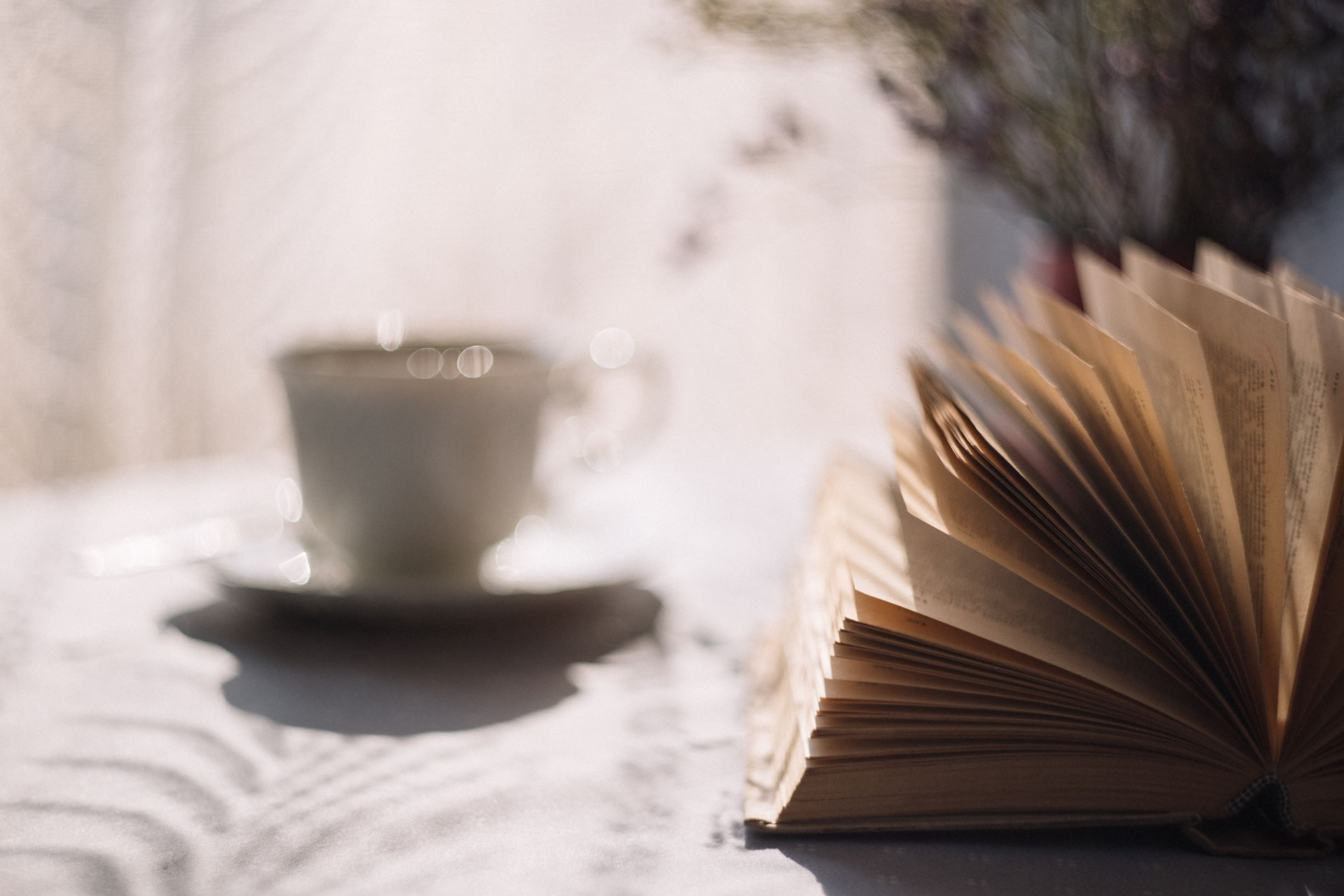 Novels and Warm Drinks