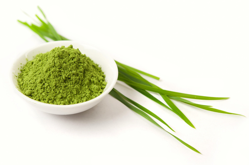 1 oz Wheatgrass 5:1 extract